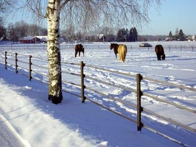 efficace en hiver